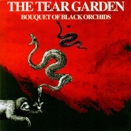 Черная орхидея 1993